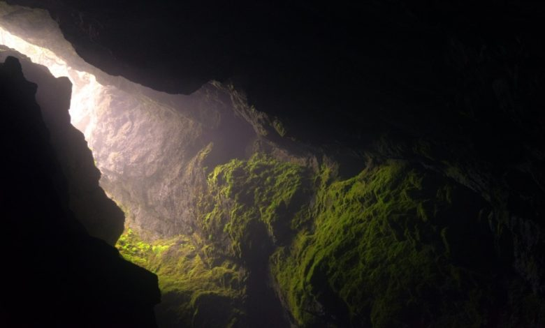 Cueva de los Tayos